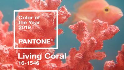 Pantone presenta Living Coral, il colore del 2019